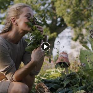 Promocijski film Slovenia Green