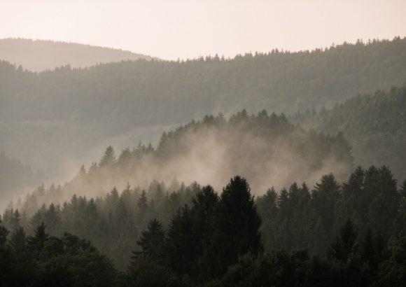 Vandranje po Framskem Pohorju